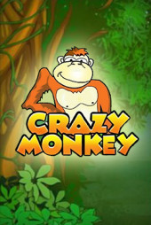 Crazy Monkey video slot