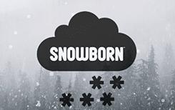 Snowborn casinos and slots