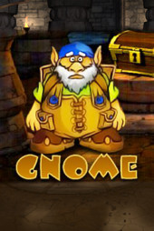 Gnome video slot